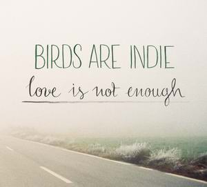 Birds Are Indie 'Love Is Not Enough